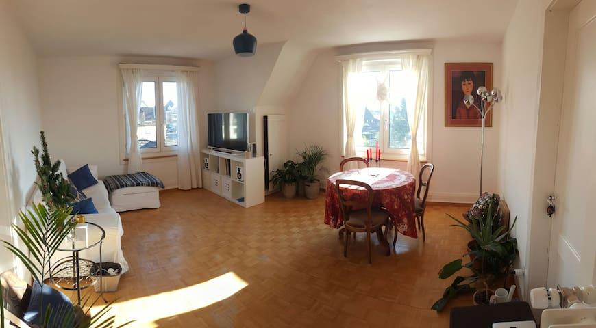 Cosy top floor 3-bedroom with lovely lake views - Meilen - Daire