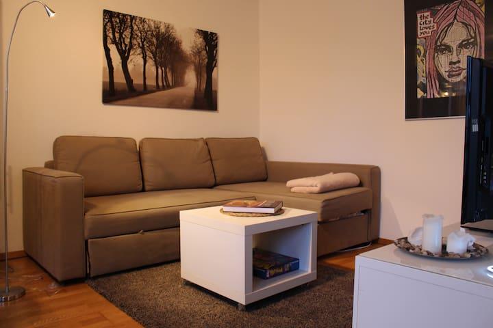Penthousewohnung in erstklassiger Lage - Ulm - Appartement