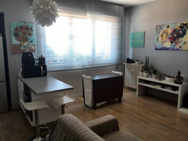 Cozy flat near Monza - Albiate