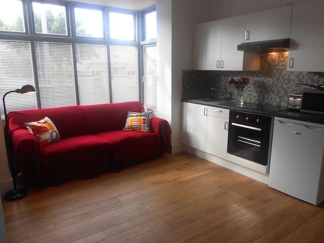 Quiet But Very Central Apartment - Wexford - Lägenhet