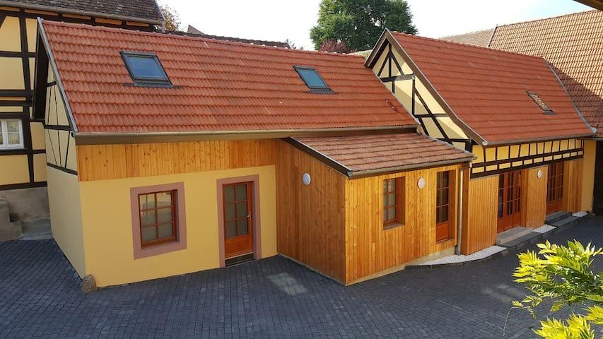 Gite Entre-Deux-Vignes / spa sauna hammam 6 pers. - Scharrachbergheim-Irmstett - Casa