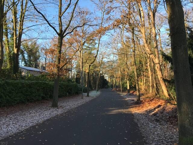 Exclusive flat in a park 30 mins from Amsterdam - Hilversum - Leilighet