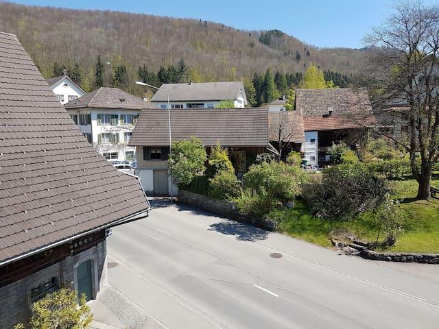 Atelierhaus mit Gartensitzplatz - Hausen am Albis - Casa