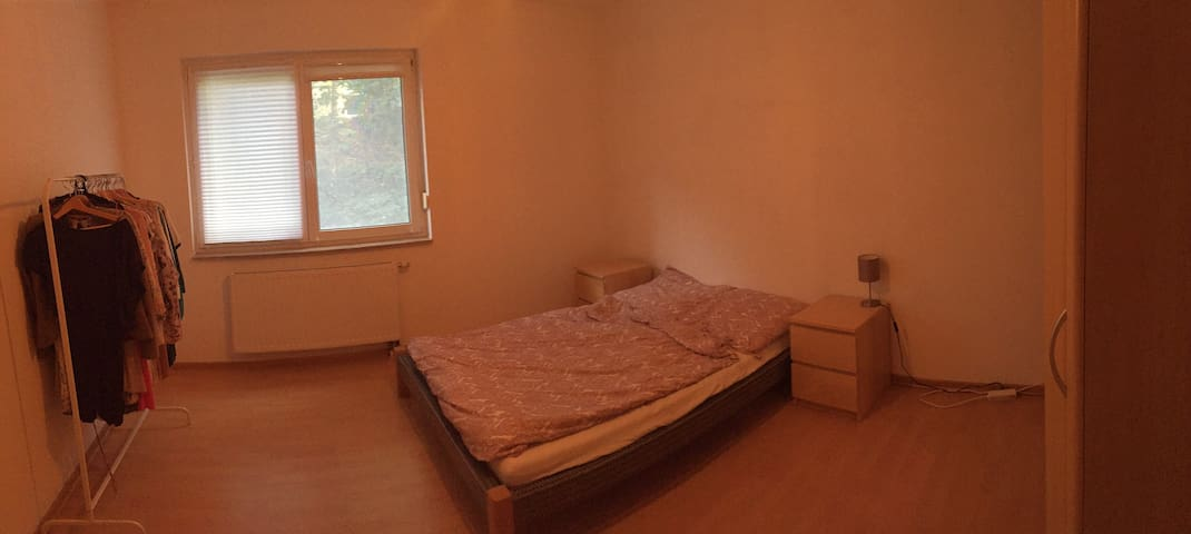 Spacious private room in Jena, close to the center - Jena