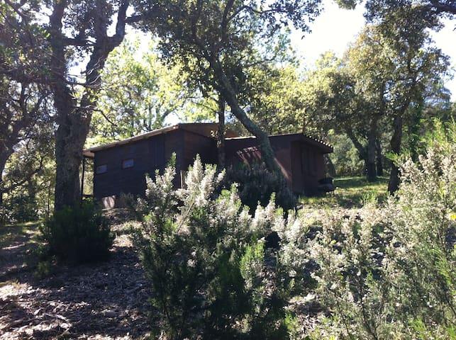 Chalet en bois dans la forêt - La Garde-Freinet - Bangalô