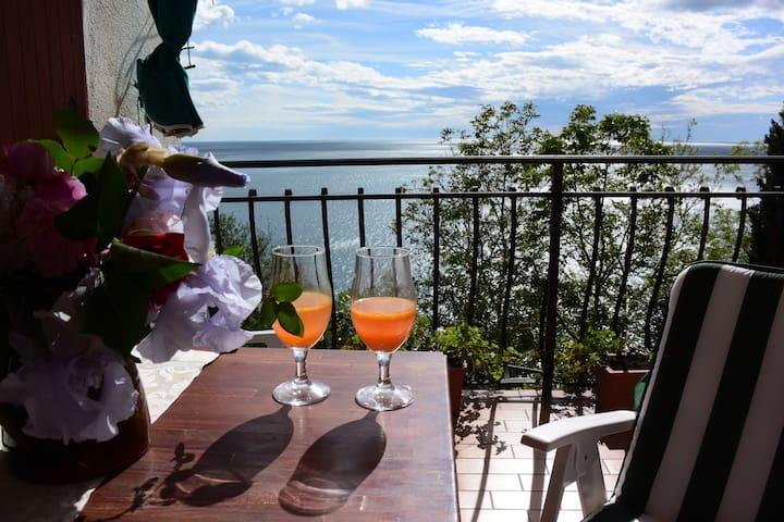 Villa S.Croce, sul Golfo di Trieste - Trieste - Apartment