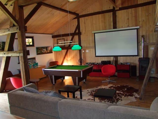 Chaleureux Loft dans une ambiance châlet! - Epfig - Loteng Studio