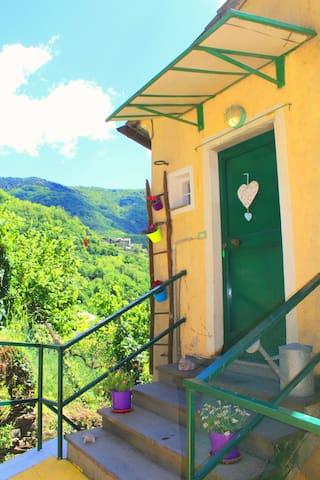 Economic holiday home Liguria - Borzonasca - Lägenhet