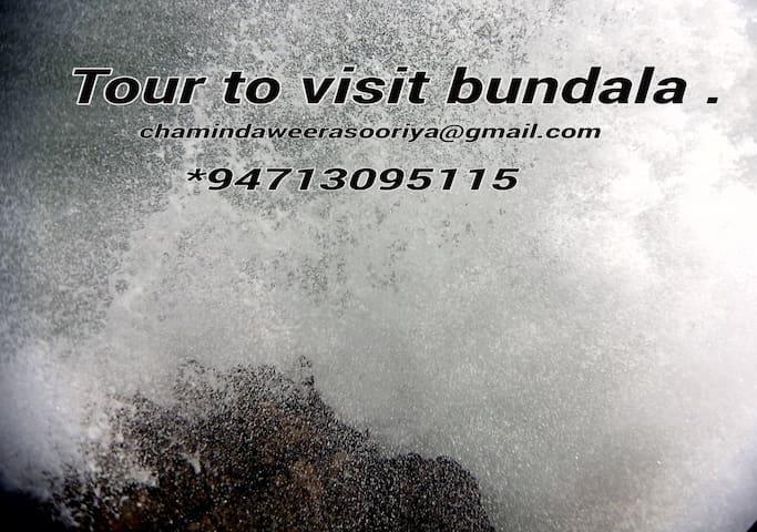 Visit to bundala - Hambantota - Bed & Breakfast