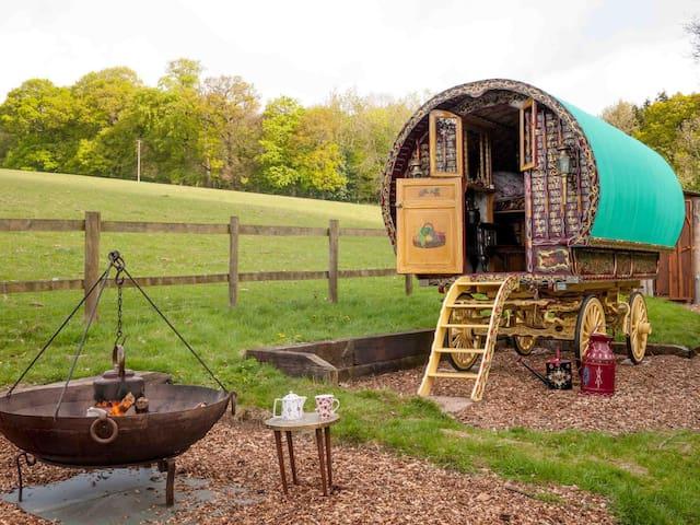 Gypsy Caravan and Shepherds Hut in The Chilterns - Turville Heath - Oda + Kahvaltı