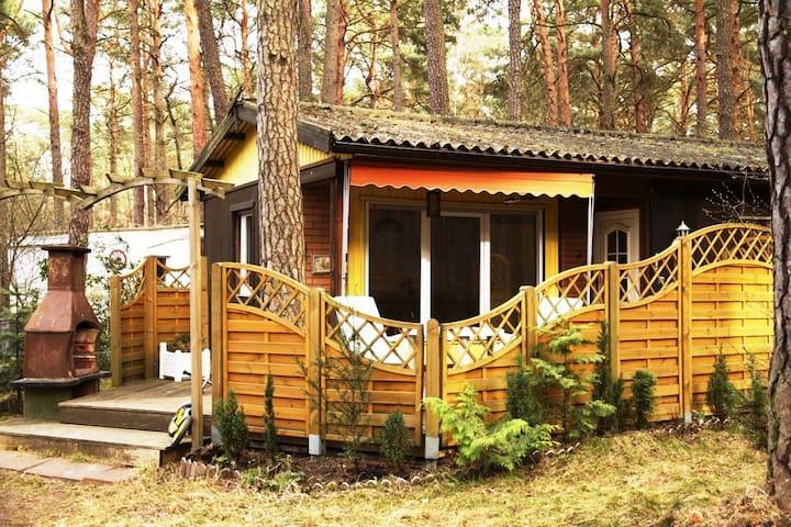 Wolfis Ferienhaus in Bad Saarow  - Bad Saarow - Hus