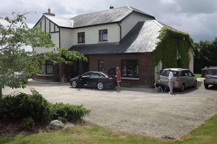 Tudor Lodge B&B - carlow