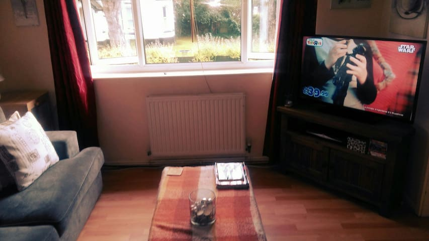 Great Room in Convenient Area - Stretford