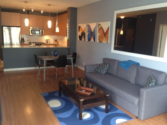 Spacious 1 bedroom. Steps to skytrain. - Port Moody