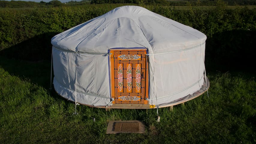 Cosy Yurt in Peaceful Eco retreat - bude - 유르트(Yurt)