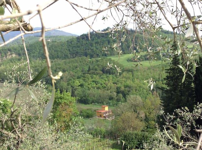 Room & garden in Florence country - Pelago - Maison
