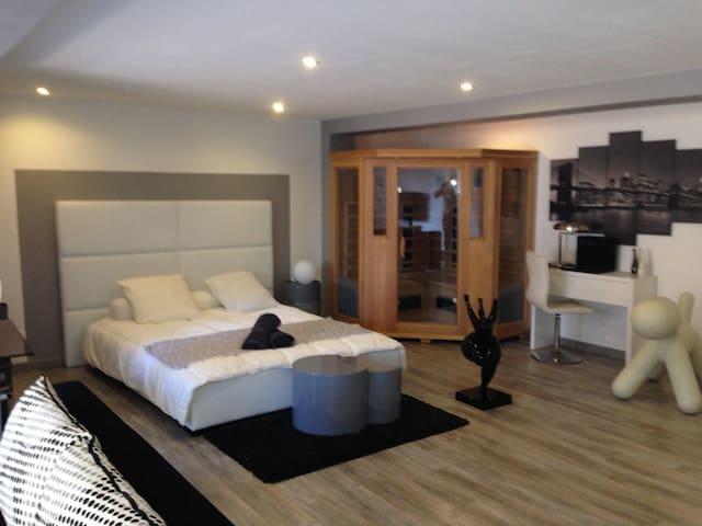 Maison proche d'Albi, piscine, spa - Castelnau de Lévis  - Hus