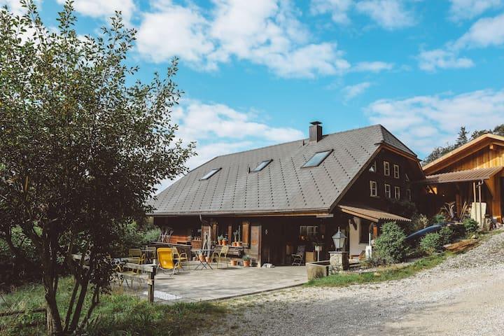 Lovely Nature place : Mountain, Lake, Silence - Guggisberg - 獨棟