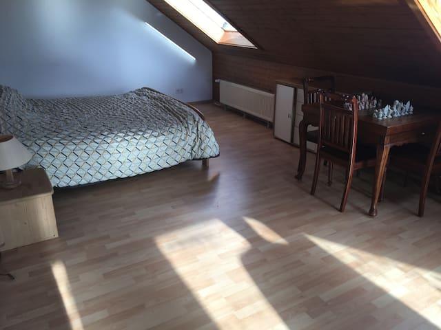 Large loft 2 private bedrooms - Bischofsheim - Casa