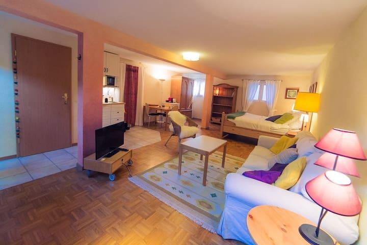 Cozy and calm studio - well located - Confignon - Villa