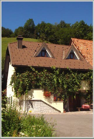 Casa Rosa Home from Home - Bovec - Dom