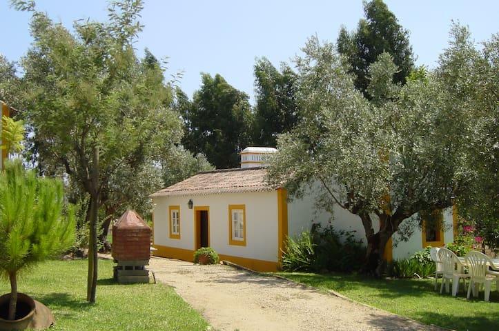 Rustic house in a portuguese farm - Constância - Talo