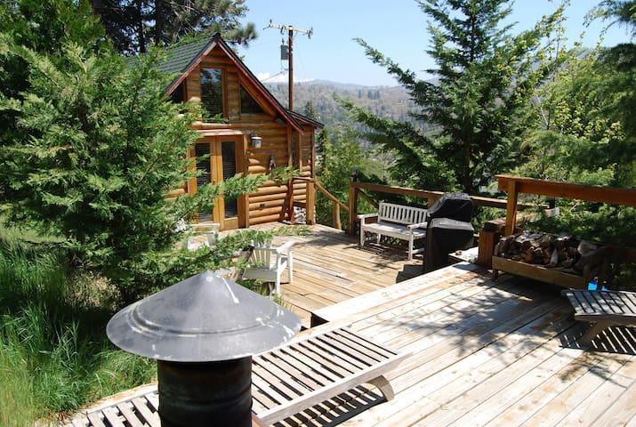 Cute, cozy cabin away from it all - Cedar Glen  - Hus