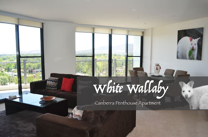 White Wallaby Penthouse Apartment - Canberra - Apartament