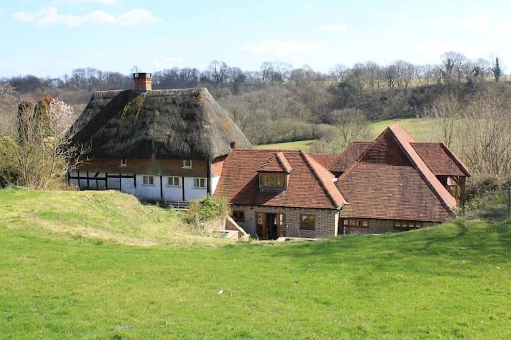 Thatched cottage and converted barn - Hawkley