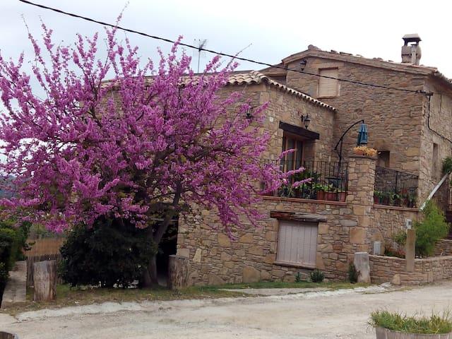 Vistas a Montserrat, casa de campo - Castellbell i el Vilar - Dom