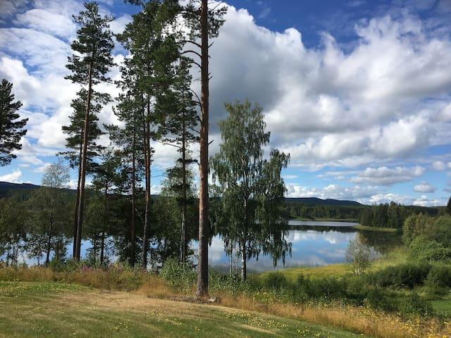 Welcome to Paradise - Tjärnmyra - Haus