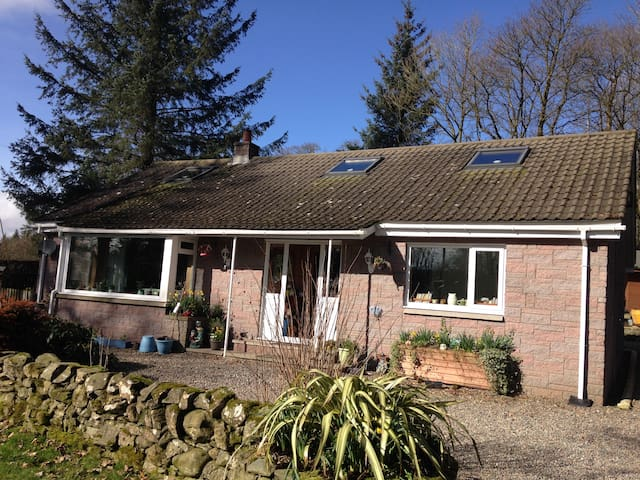 A detached bungalow, surrounded by trees - Moniaive - Bungalow