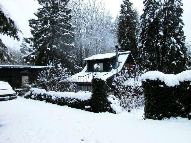 Hand built restored cedar cottage - Falls City - Casa