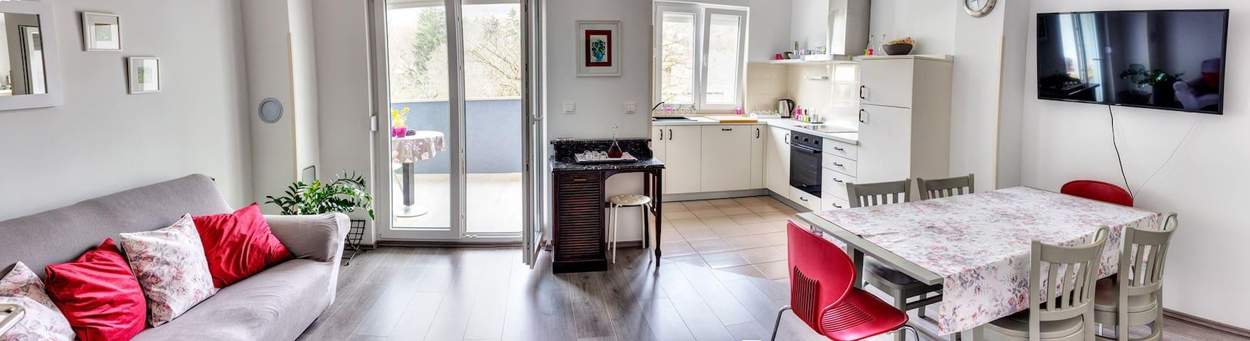 Apartments Marija Pazin - Pazin - Apartament