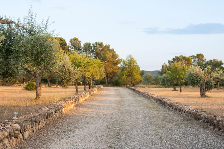 Charming country house Parking incl - Tivissa - Casa