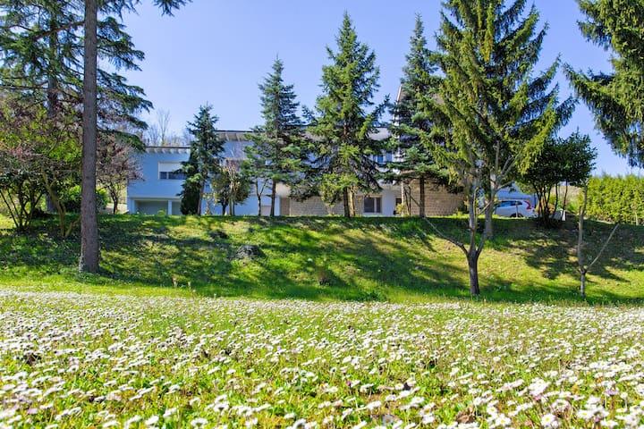 Villa Turchina Bed & Breakfast**** - Monleale - Villa