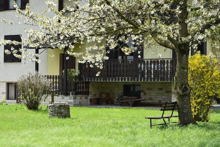 Casa Lucia - Pieve di Ledro - Lägenhet