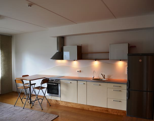Friendly apartment with sauna - Peetri