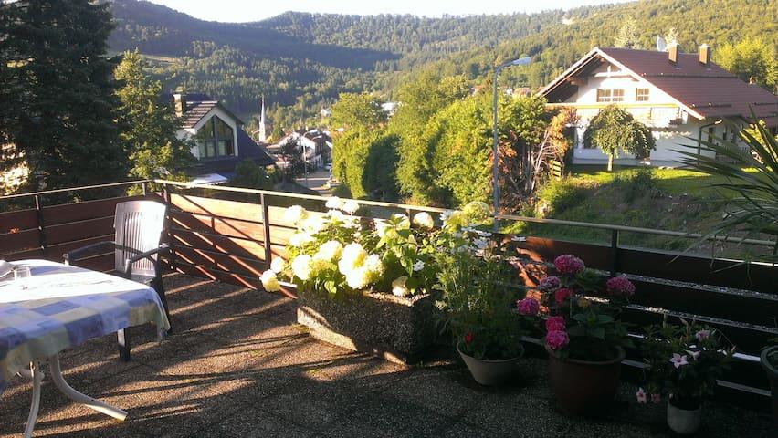 Ferienwohnung Pfefferle - Albstadt-Laufen - Leilighet