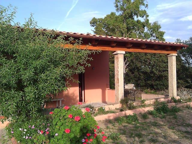 Cosy House nearby Cala D'Ambra - San Teodoro - Casa