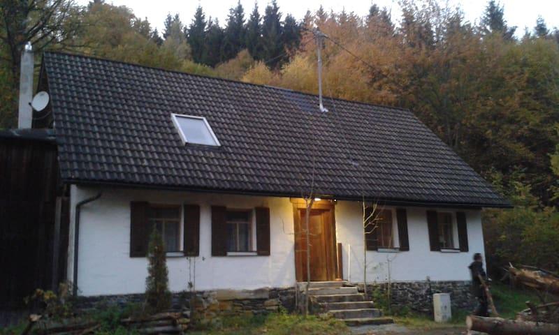 Der Waldgang - Wilhelmsthal - Hus