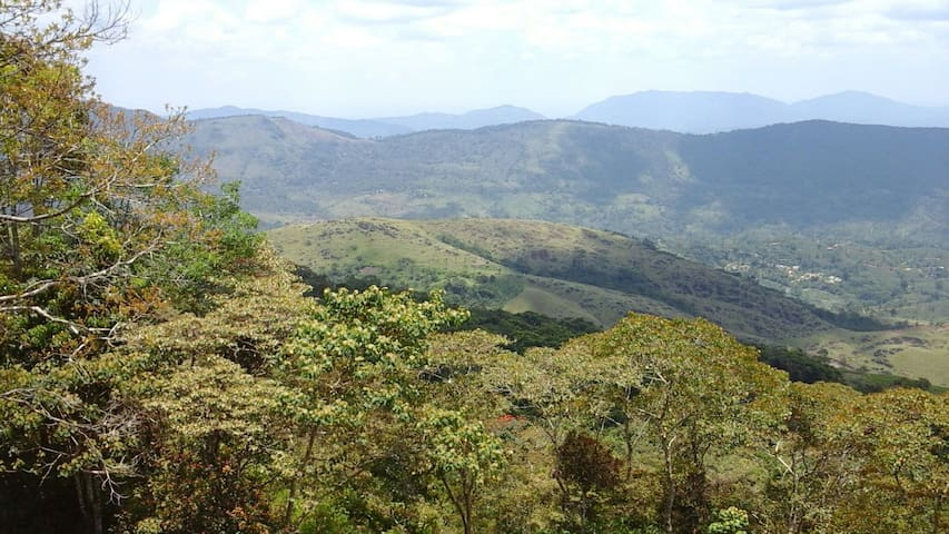 Mount crest inn, deniyaya, srilanka - viharahena  road, deniyaya, sri lanka  - Villa