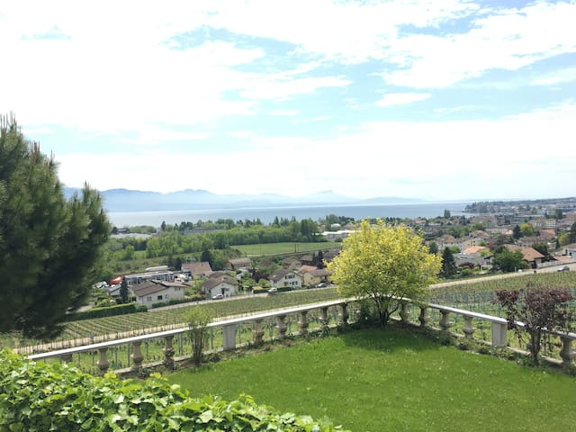 Beautiful 2br flat with a like view - Lonay - Appartement