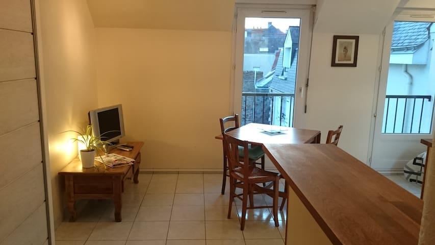 Appartement lumineux au coeur de la Doutre - Angers - Apartment