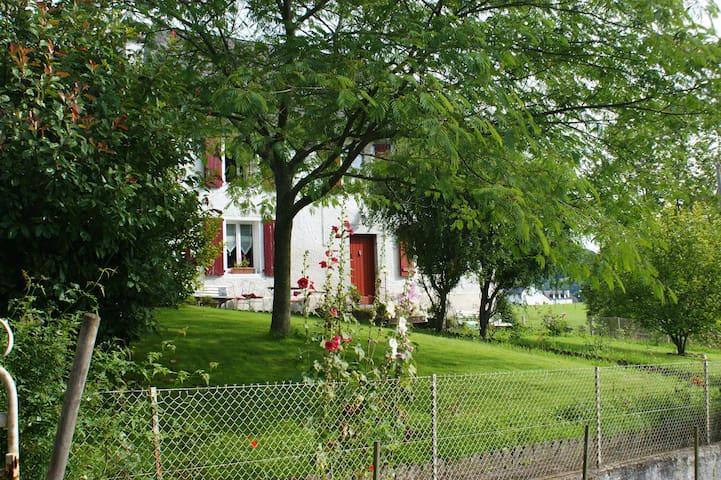 la maison aux hortensias - Lanne-en-Barétous - Hus