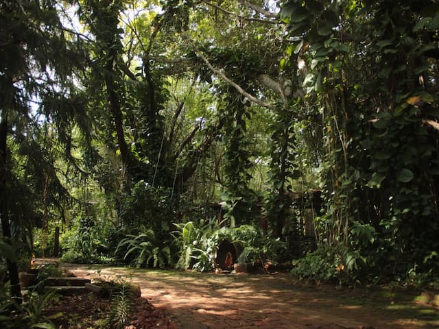 A family room in Auroville - Bommayapalayam - Гестхаус