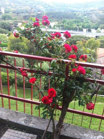 camera matrimoniale con giardino - Spotorno - 家庭式旅館
