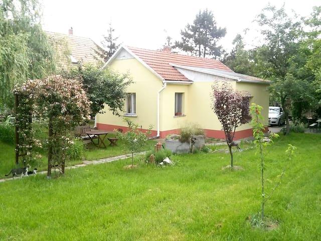 Artist house near Budapest - Erdőkertes - Casa