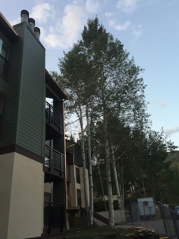 10 minute walk to Lions Head, Vail - Vail - Lejlighed