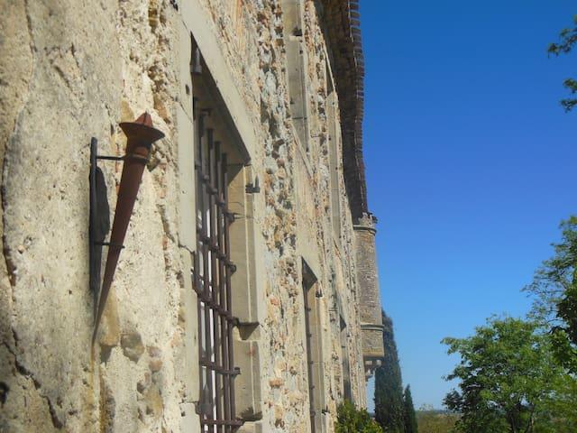 Chateau near Carcassonne with pool - Souilhe - Zamek